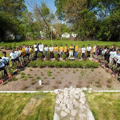 Bioretention Gardens in Detroit