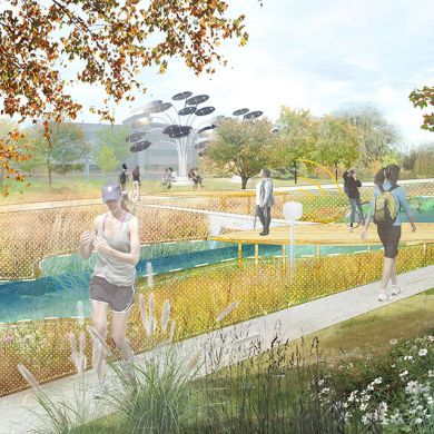 Perspective - The Dynamic Meadows enhance local habitats as demonstrations and social spaces.