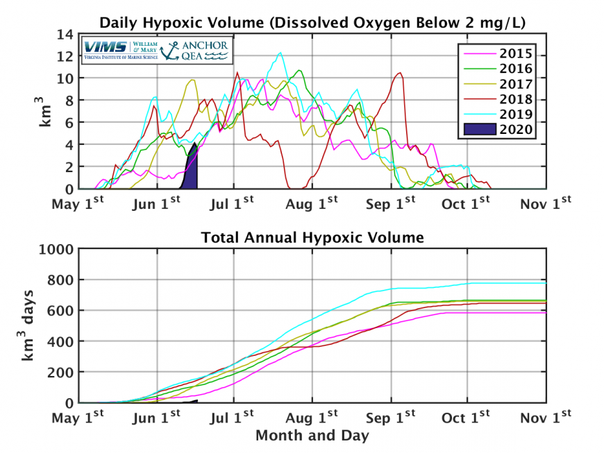 Real-time Estimates of Hypoxic Water Volume